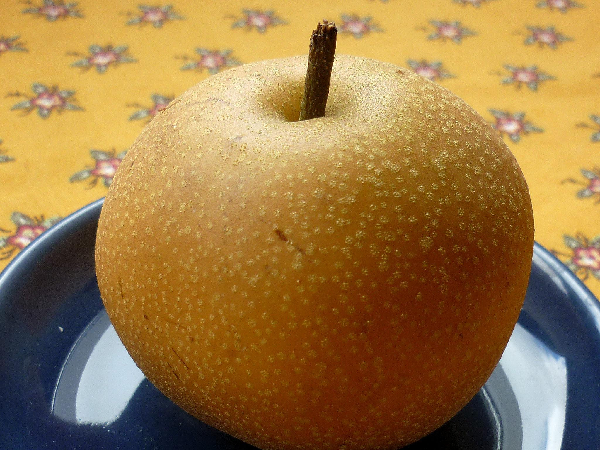 Pomme poire nashi les taxinomes - Maison de la pomme et de la poire ...
